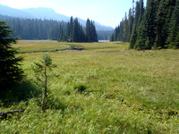 North of White Pass are myriad lakes, meadows and elk